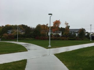 jewer-bailey-st-johns-nl-st-davids-park-3